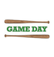 sketch baseball bat with typography vector image