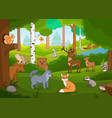 various cartoon animals in forest vector image