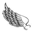 wing isolated on white background design element vector image vector image