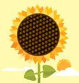 big sunflower vector image
