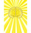 Bright Brain vector image vector image