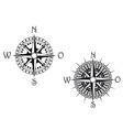 compass symbol vector image vector image