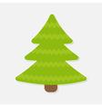 Fir tree Christmas tree Isolated vector image