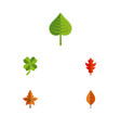 flat icon foliage set of frond leafage hickory vector image vector image