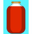 Jar vector image
