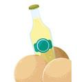 juice bottle fresh fruit melon vector image vector image