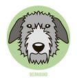 portrait of deerhound vector image vector image