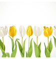yellow and white flowers tulips seamless vector image vector image