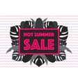 Hot Summer Sale poster tropical leaves vector image