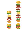 a hamburger ingredients of vector image vector image