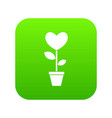 heart flower in a pot icon digital green vector image