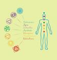 human body with chakra meditationcontour vector image