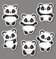 panda bear of vector image