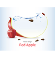 Red Apple Fruits Design vector image vector image