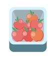 Apples in Tray Flat Design vector image