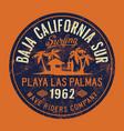 baja california sur wave surf company vector image vector image