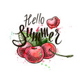 hello summer inscription on a background vector image vector image