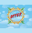 limited offer of travel and vacation poster vector image