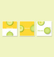 set of fruit banners with melon in paper art style vector image vector image
