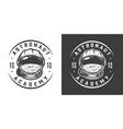 vintage monochrome space logo vector image vector image
