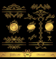 Golden Set Calligraphic and Decorate elements vector image