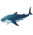 whaleshark vector image