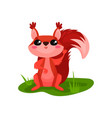 cute red squirrel sitting on grass and waving paw vector image vector image