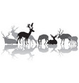 deers silhouettes with reflection vector image
