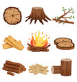 firewood elements set vector image