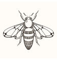 hand drawn engraving sketch bee for tattoo and vector image