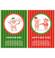 happy new year postcard male and female piglets vector image vector image