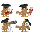 Set owl vector image vector image