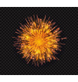 bright shiny sparkling flash firework salute vector image vector image