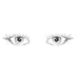 eyes hand drawn vector image vector image