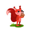 funny red squirrel standing on green grass and vector image vector image