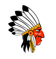 indigenous people vector image vector image