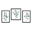 pictures or posters with elegant eucalytus vector image vector image
