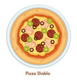pizza diablo italian food dish salami and cheese vector image vector image