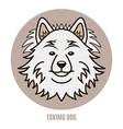 portrait of eskimo dog vector image vector image