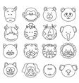 cartoon animals faces vector image