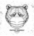 animal bear wearing face medical mask covid-19