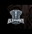 elephant mascot sport logo design vector image vector image