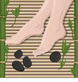 Female feet vector image vector image