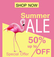 flamingo summer sale card violet and pink vector image vector image