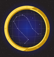 gemini star horoscope zodiac in fish eye vector image