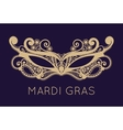 Mardi Gras mask of lace collection set vector image vector image