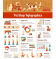 Pet shop infographic set