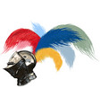 tophelm and feathers vector image
