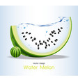 Water Melon Fruits Design vector image