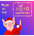 year of pig vector image vector image